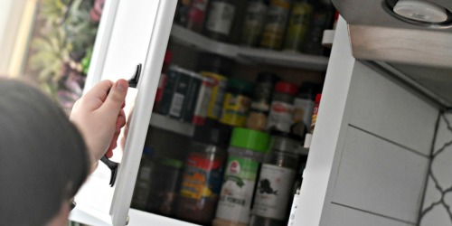 Organize Your Kitchen Spice Cabinet with THIS!