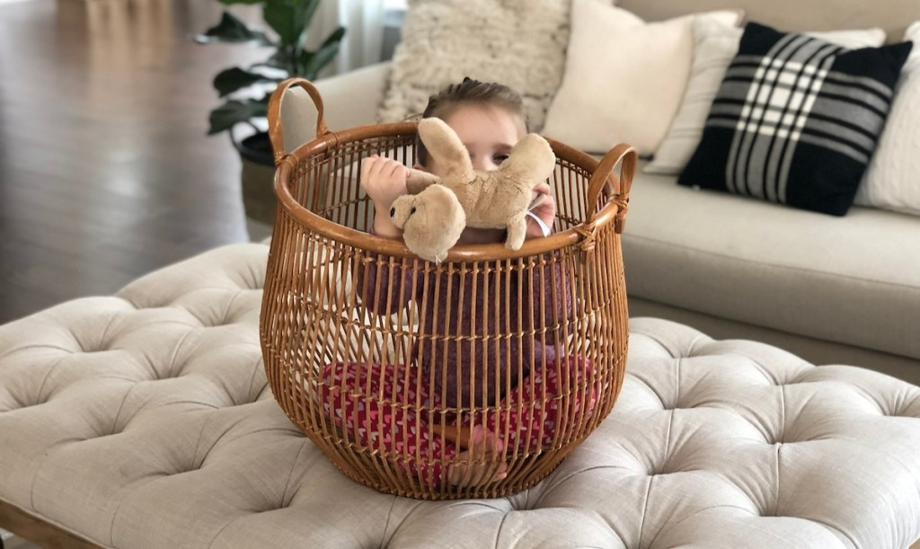 charli with stuffed animal puppy in a basket sitting on an ottoman in a living room