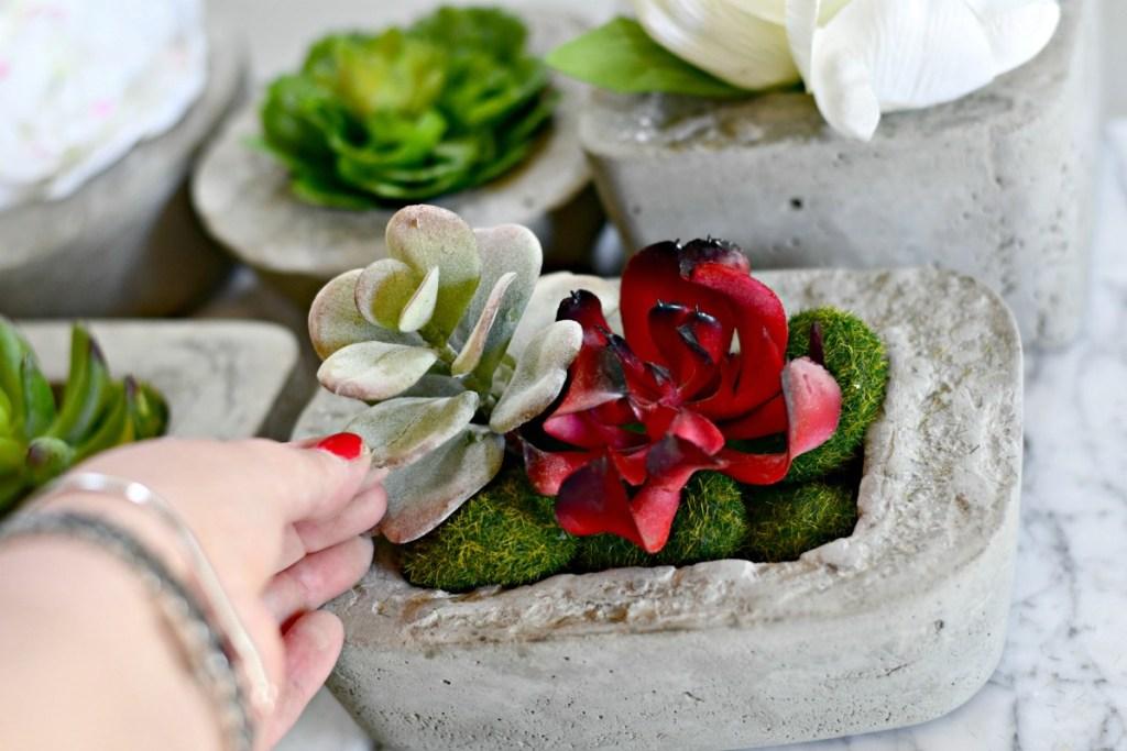 dollar tree moss rocks and succulents inside a DIY concrete planter