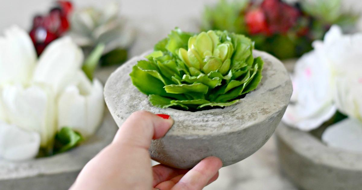 DIY concrete planter with a plant inside