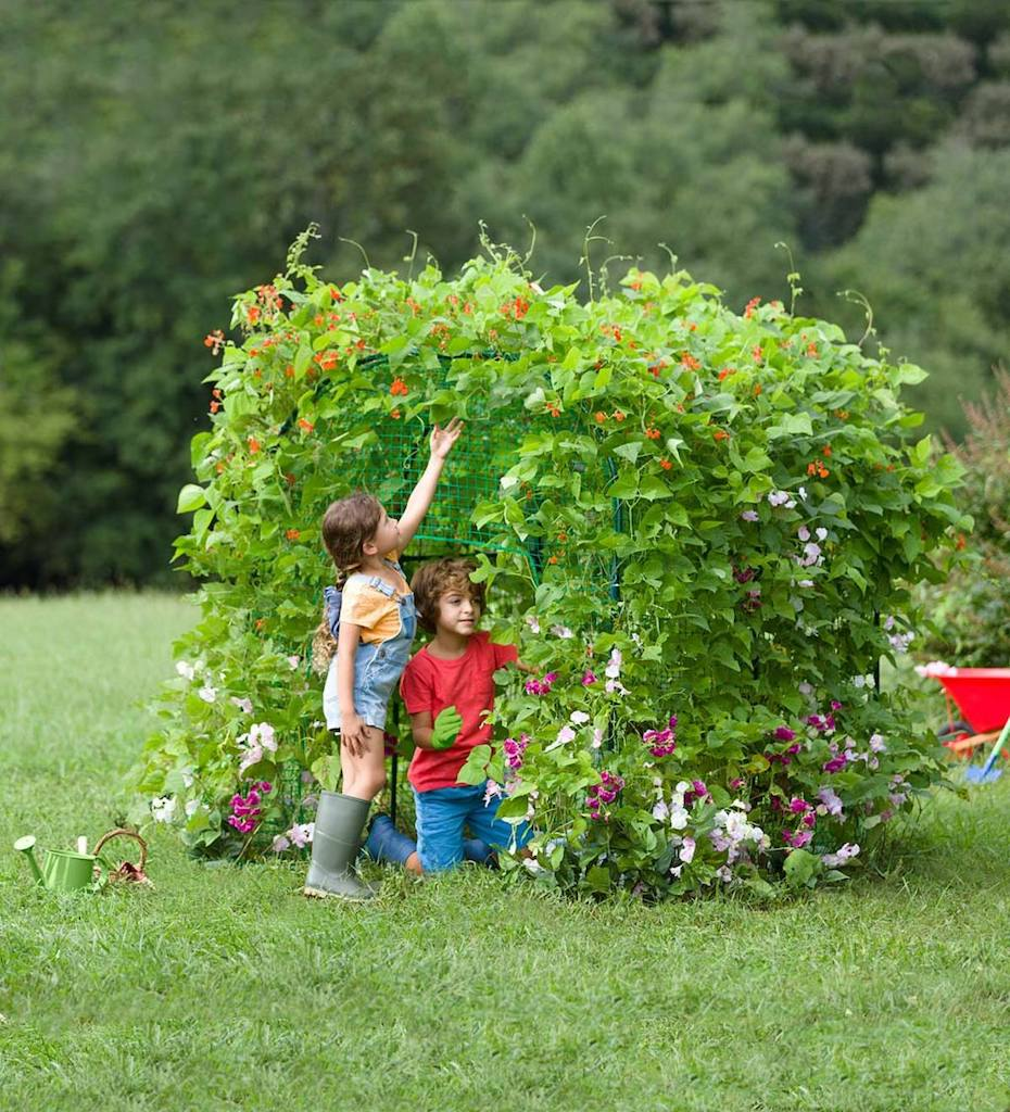 Kids playing in garden fort