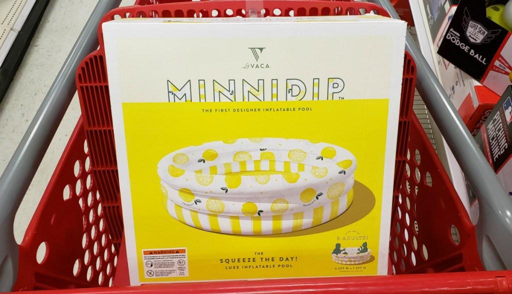 Lavaca minnidip lemon pool at Target