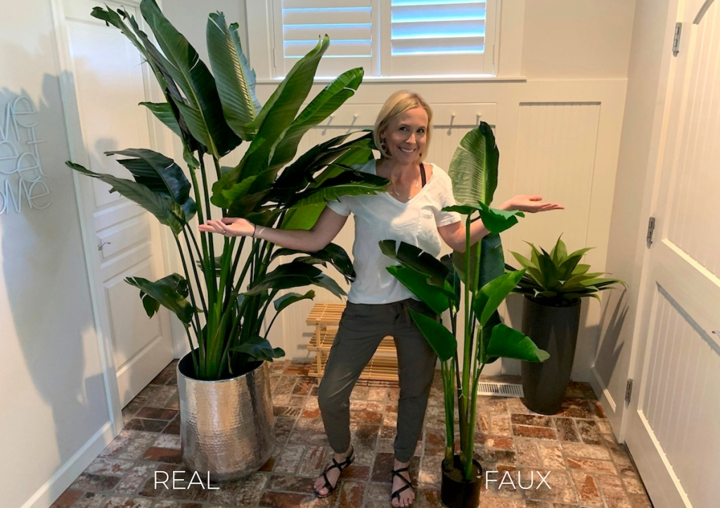 woman with two tall banana leaf tree plants on brick floor