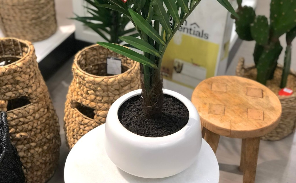 white planters pot with palm leaf stems