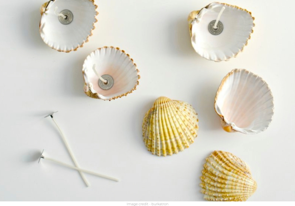 mini seashells with candle wicks on white surface