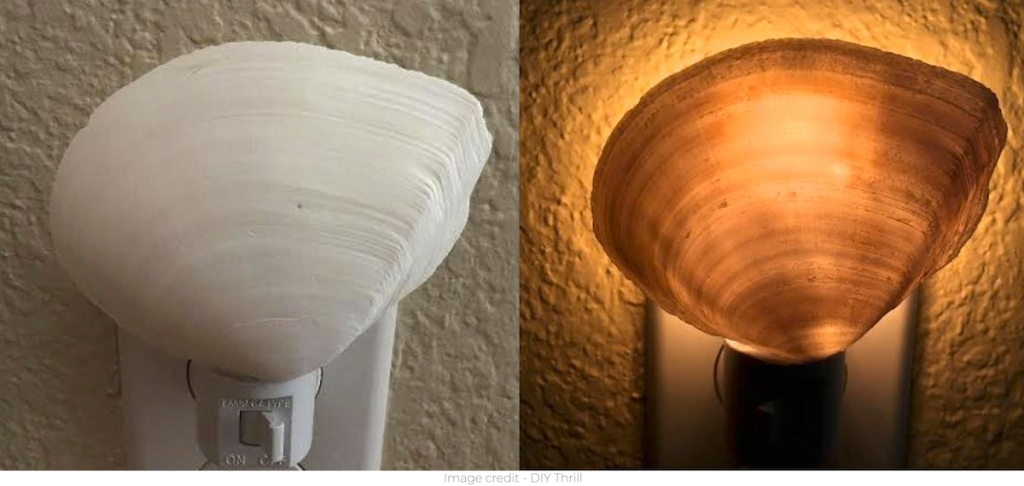 side by side of seashell nightlight turned on and off