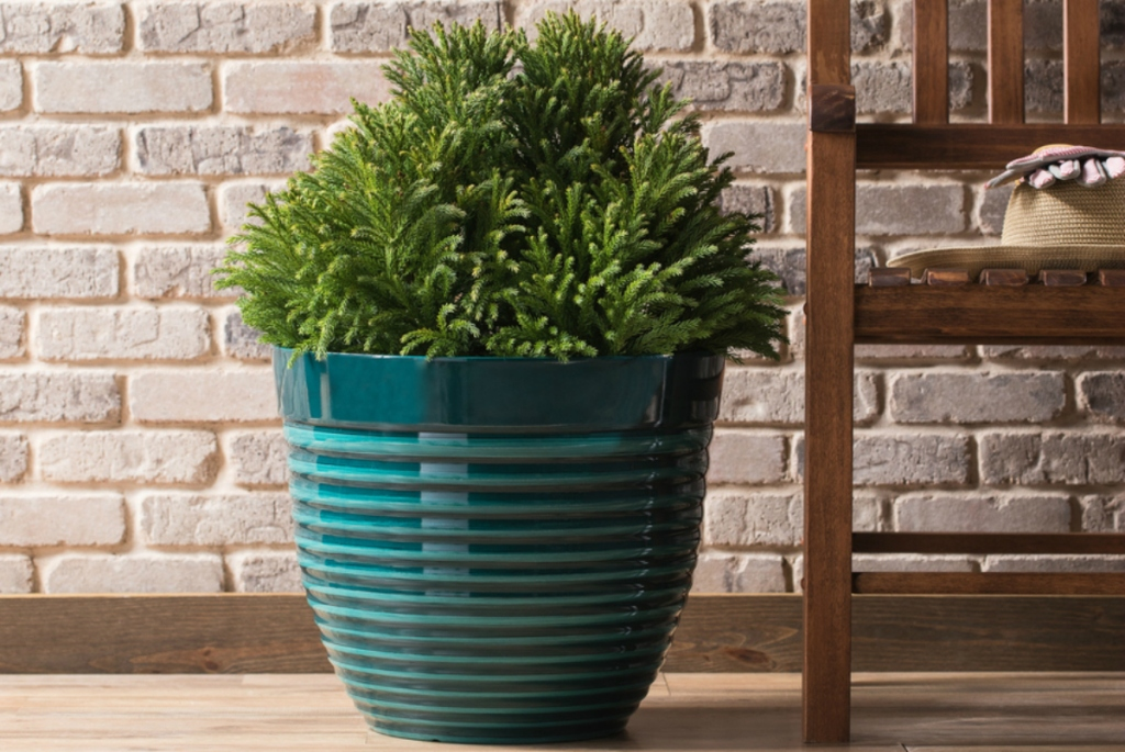 Allen + Roth 18x86-in W X 16x.3-in H Teal Resin Planter