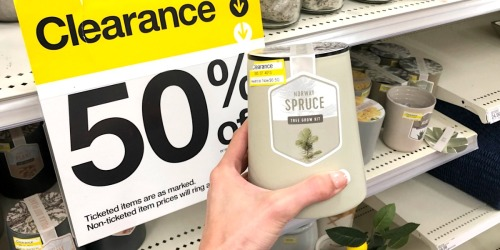 Grow Your Own Trees, Succulents & More with These Target Clearance Deals
