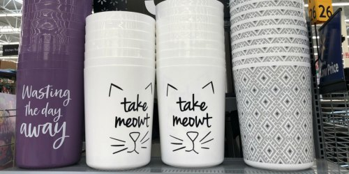 Change Out Your Boring Trash Can for These Fun $3.48 Bins at Walmart