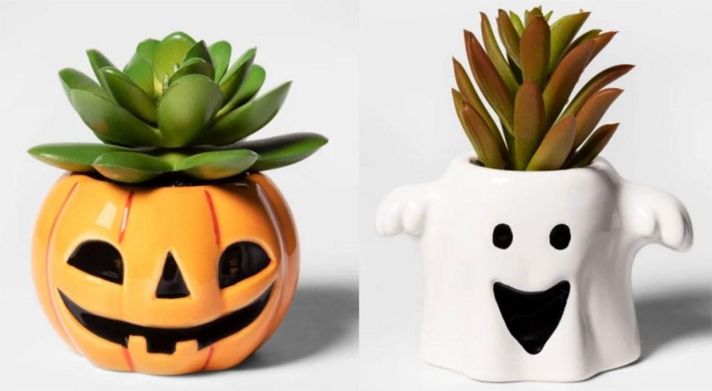 halloween succulents