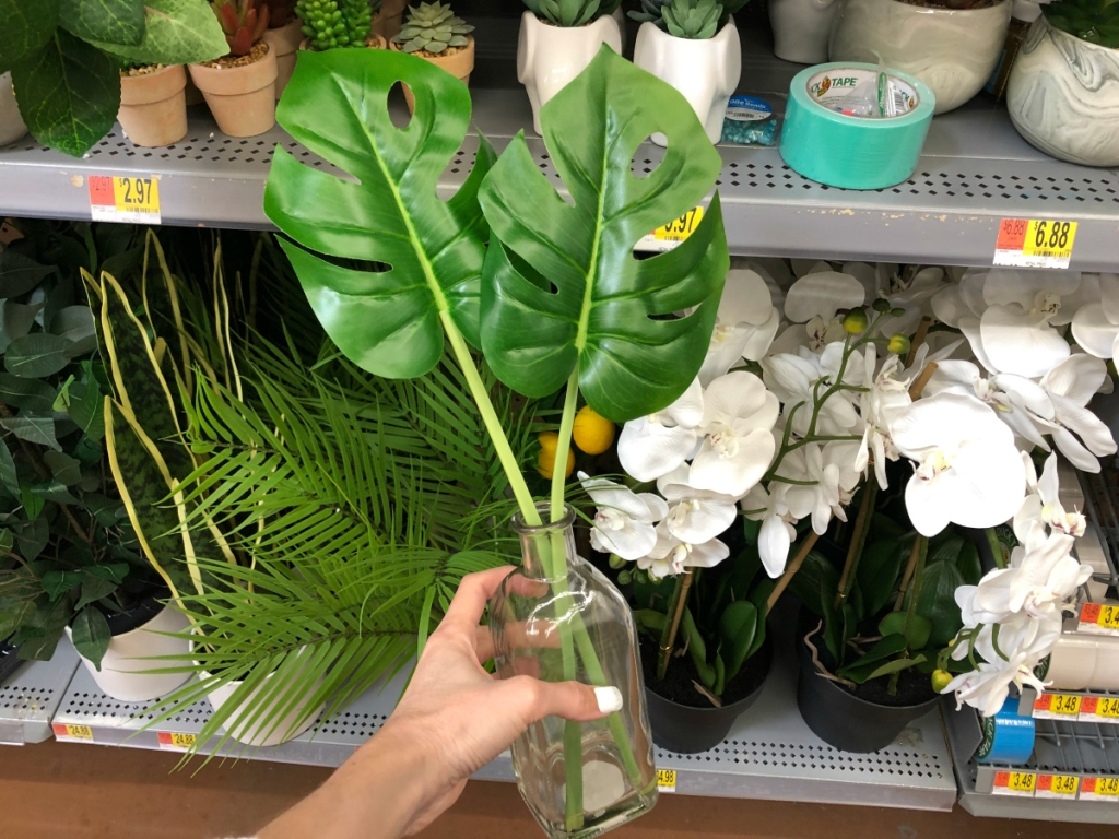 hand holding Mainstays Monstera In Bottle