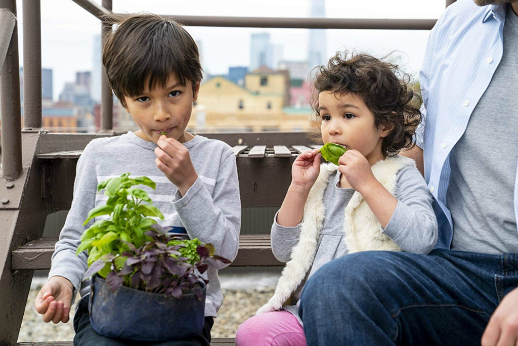 kids eating harvest from Seedsheet Gardening Kit
