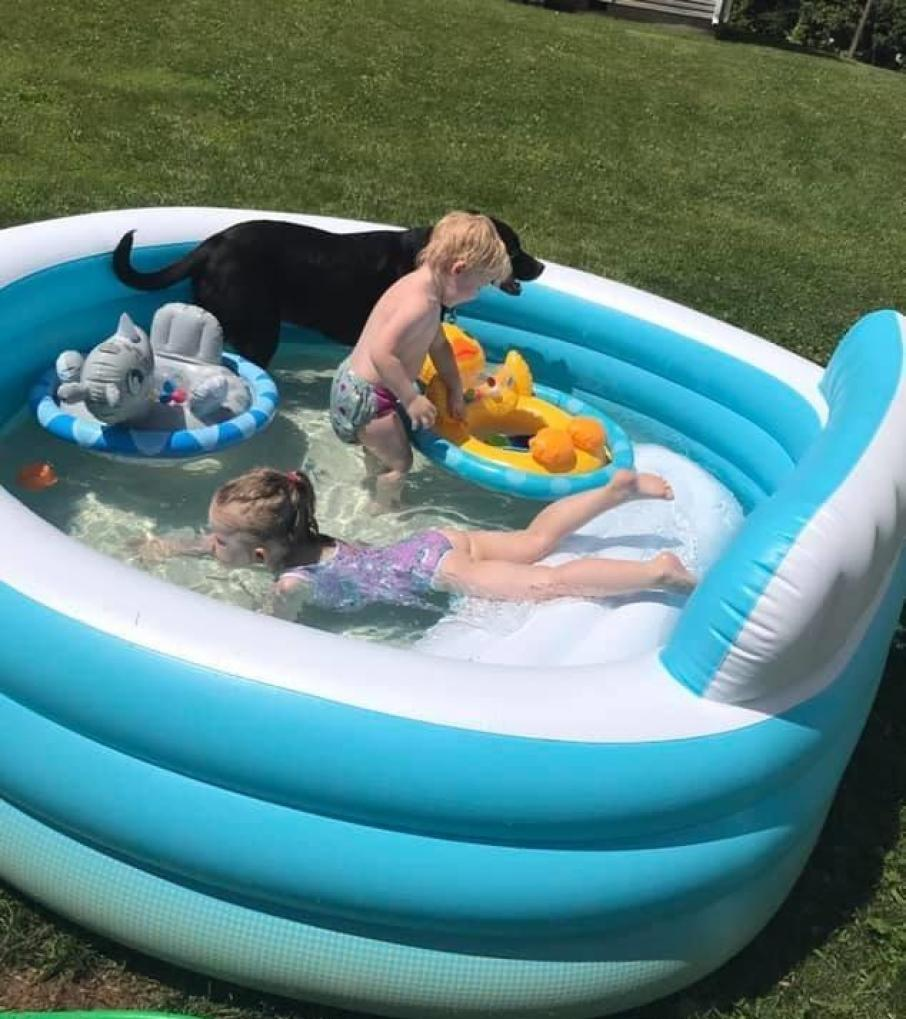 kids and dog playing in inflatable pool
