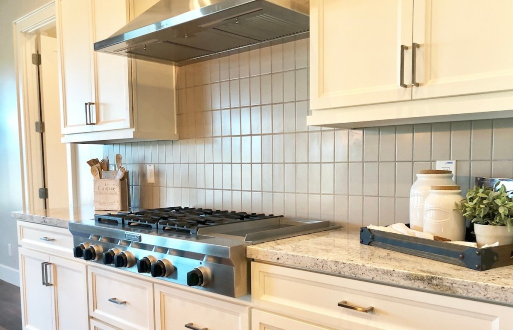 stainless steel gas range with hood vent