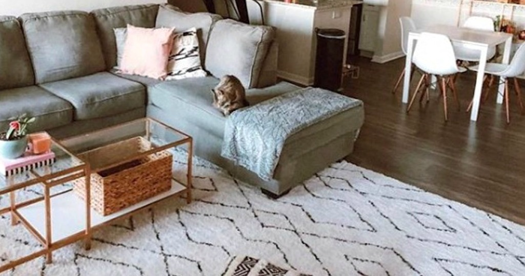 Area Rugs With These Rugsusa Deals