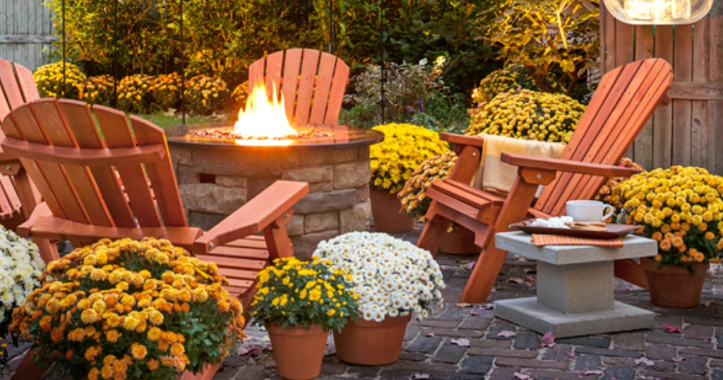 outdoor patio decked out with fall plants