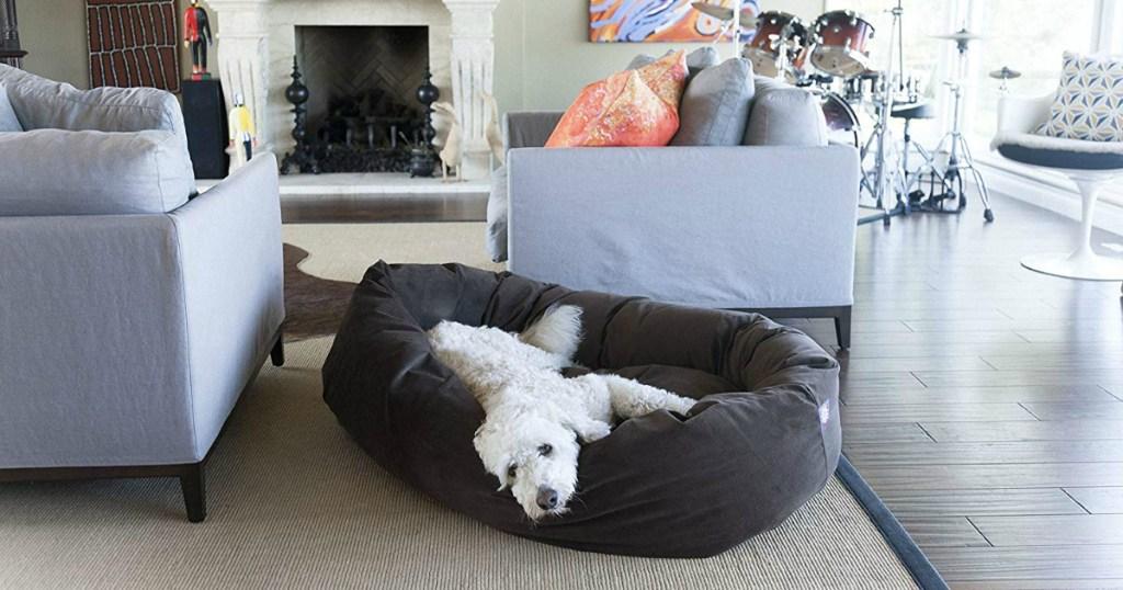 white dog laying on dog bed