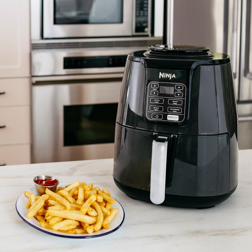 Ninja air fryer with a plate of french fries